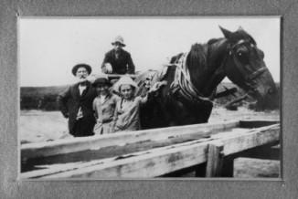 Halbert & Horse